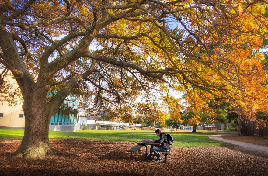 Một góc đại học Monash Úc