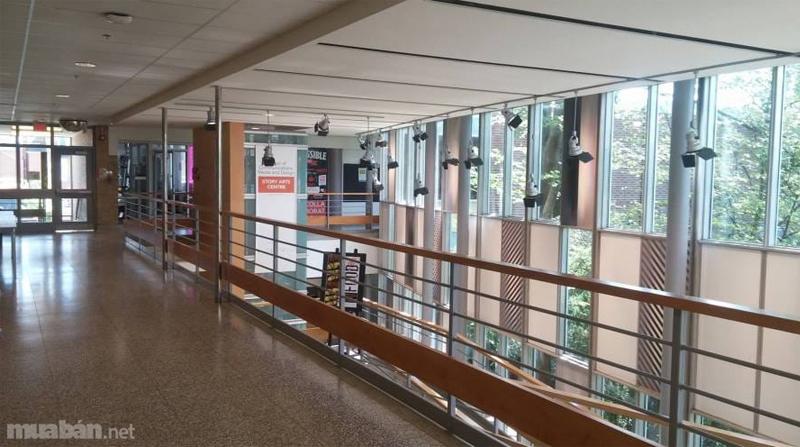 Trường Cao đẳng Centennial 800
