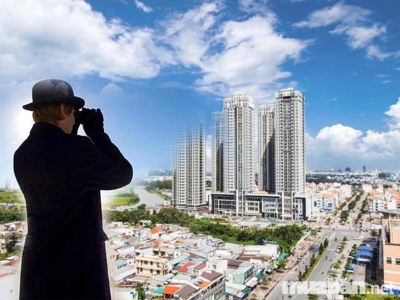 Chuyên gia môi giới bất động sản am hiểu thị trường