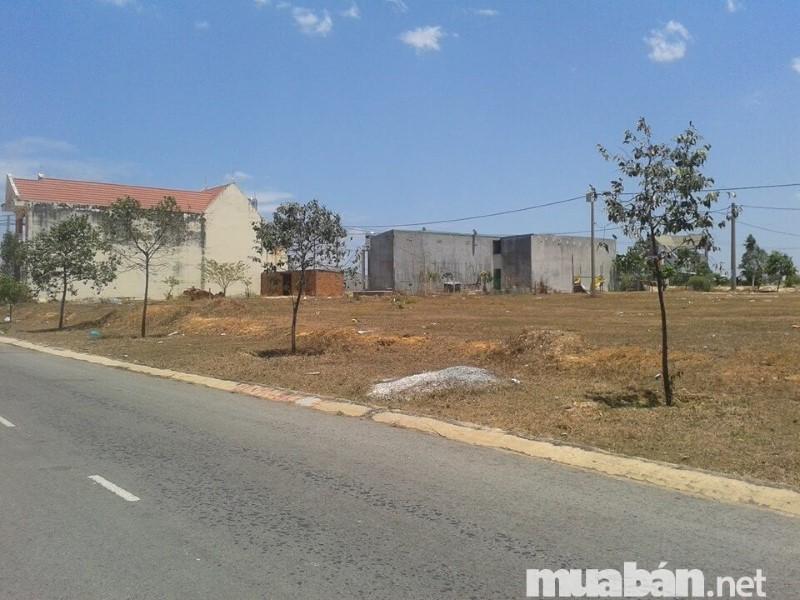 Vị trí miếng đất quyết định rất lớn đến giá trị bất động sản