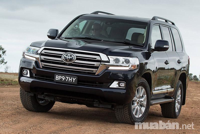 Một số loại xe thường được dùng để cho thuê hiện nay là Toyota, Isuzu, Ford, Mitsubishi,…