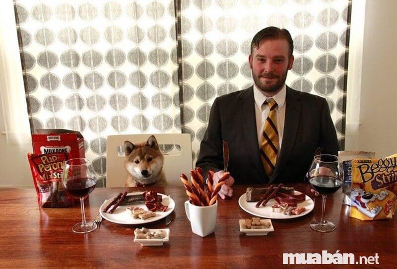 Không biết đồ ăn cho chó thì có vị gì nhỉ
