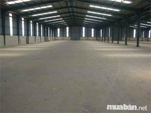 Nhà xưởng cần ở vị trí thoáng mát, sạch sẽ, thuận tiện cho giao thông