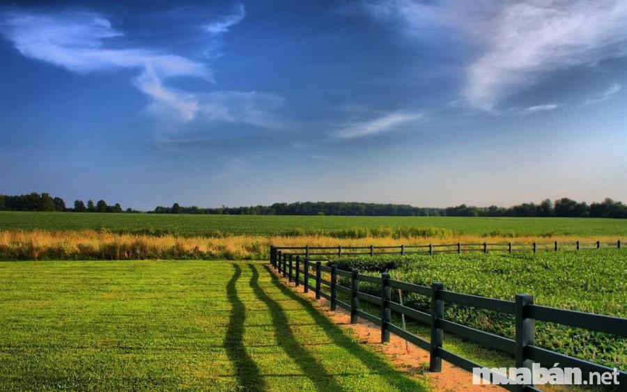 mua đất nông nghiệp làm nhà