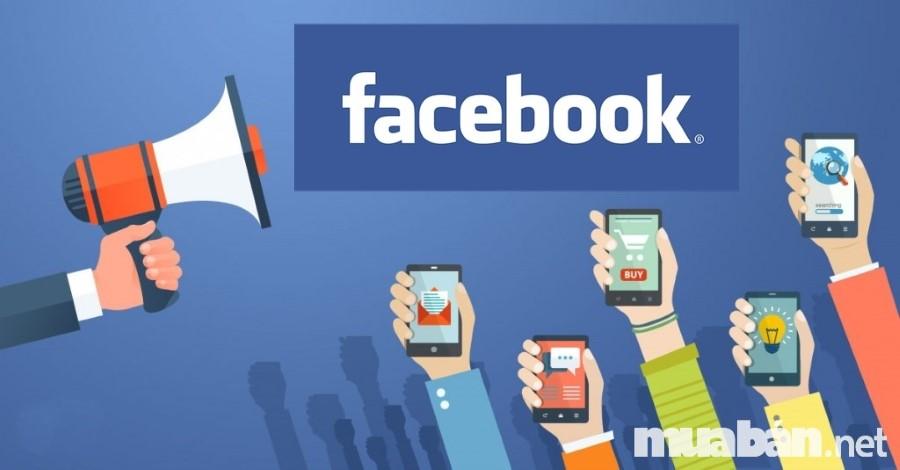 Mạng xã hồi facebook là nơi dễ dàng nhất cho việc bắt đầu kinh doanh hải sản tươi sống online