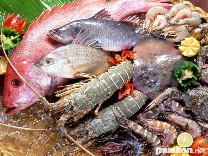 muốn kinh doanh hải sản tươi sống cần phải biết bảo quản hải sản