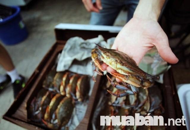 hải sản tươi sống