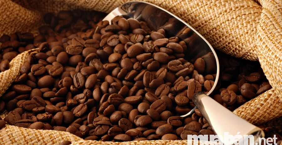 Chọn sản phẩm chủ lực khi kinh doanh cafe sạch rất quan trọng