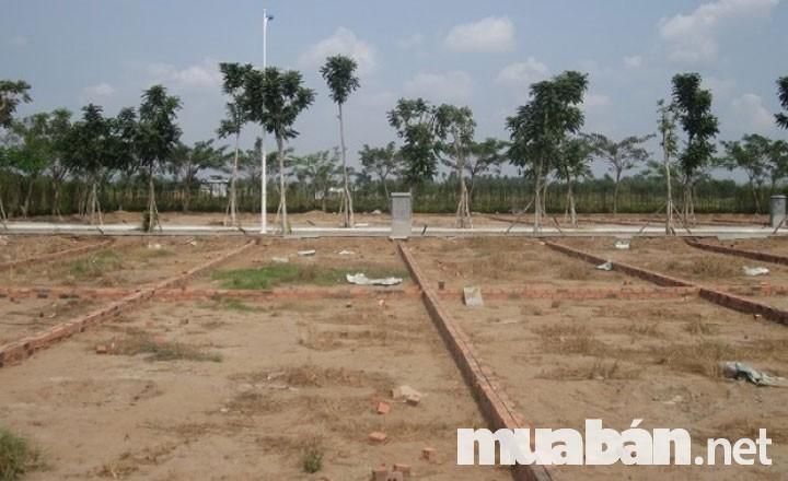Cần Phải Tìm Hiểu Kĩ Về Thửa Đất Trước Khi Làm Thủ Tục Mua Bán Đất Thổ Cư
