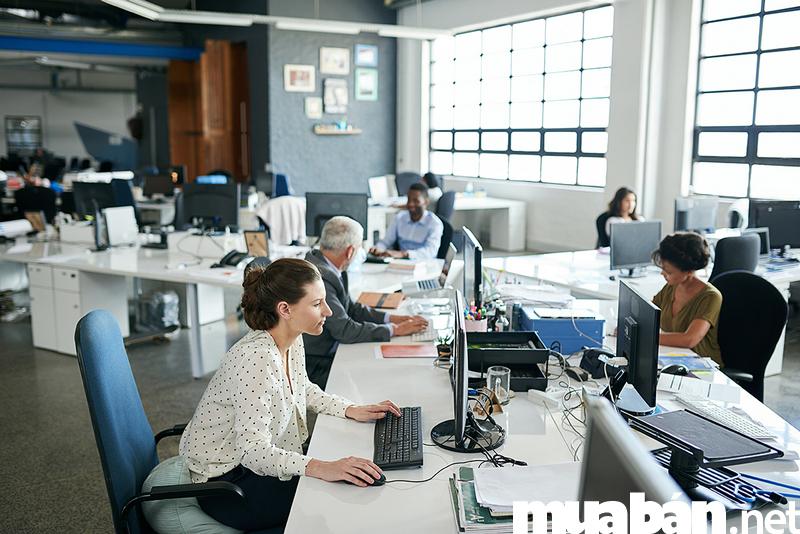 3 loại hình thuê văn phòng quận 1 phổ biến nhất hiện nay