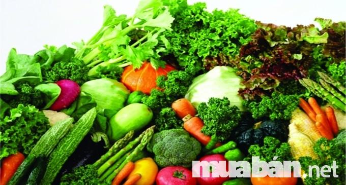Sản xuất rau sạch cho bữa cơm gia đình