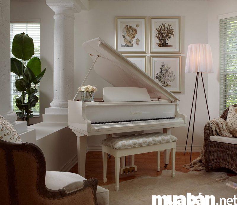 Các loại đàn Piano cũ trên thị trường