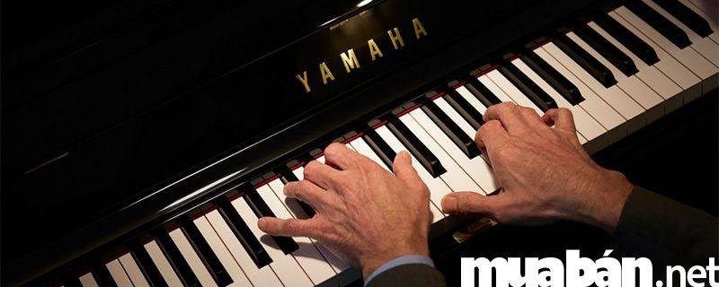 Sở hữu đàn Piano có dễ dàng?