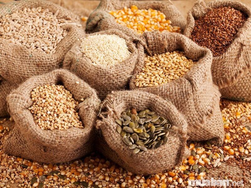 Bí quyết chọn hạt giống cây trồng đúng chuẩn