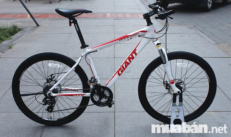 Cần lựa chọn hãng xe đạp uy tín để có được sản phẩm tốt nhất
