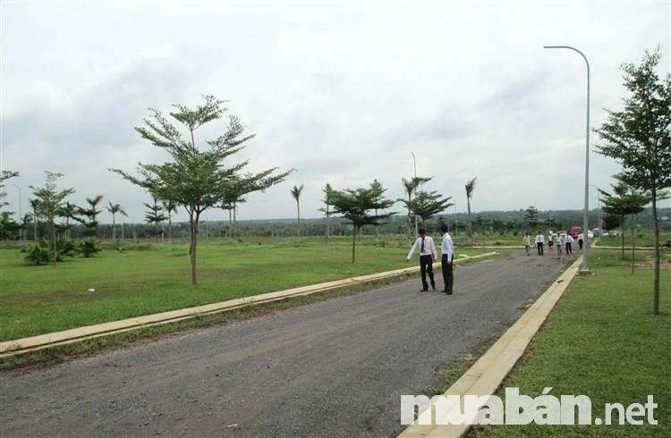 Xem xét tổng thể dự án trước khi ký hợp đồng mua đất
