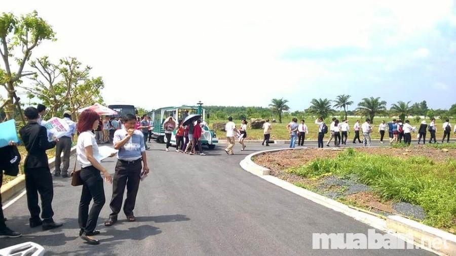 Nhiều người dân ưa chuộng đất dự án bởi tính hiệu quả và tiết kiệm cao