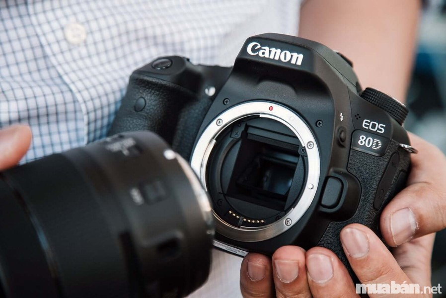 Các thương hiệu Nhật Bản đang thống trị thị trường máy ảnh