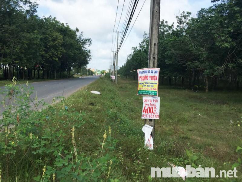 Đất nền nông thôn đang được rất nhiều nhà đầu tư quan tâm