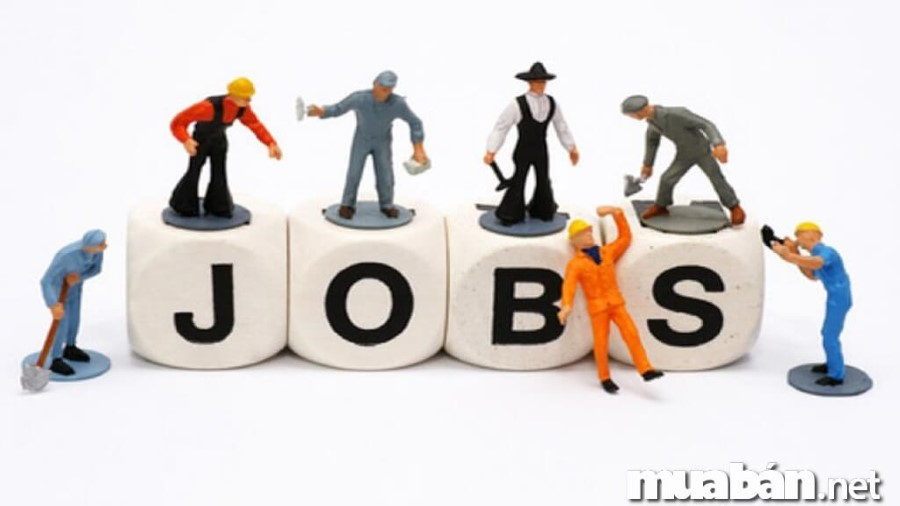 tuyển dụng