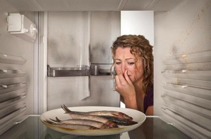 Mùi hôi tủ lạnh
