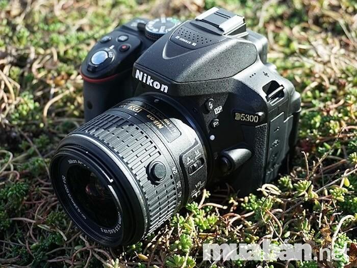Nikon D5300 cũng là cái tên sáng giá trong làng máy ảnh cho người mới