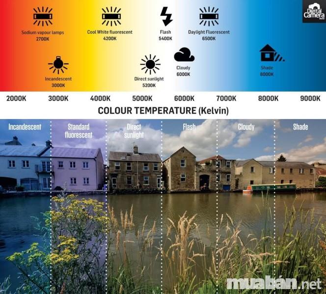 Bạn có thể chụp ảnh ở nhiều điều kiện khác nhau và điều chỉnh cân bằng trắng để bức ảnh có màu sắc trung thực