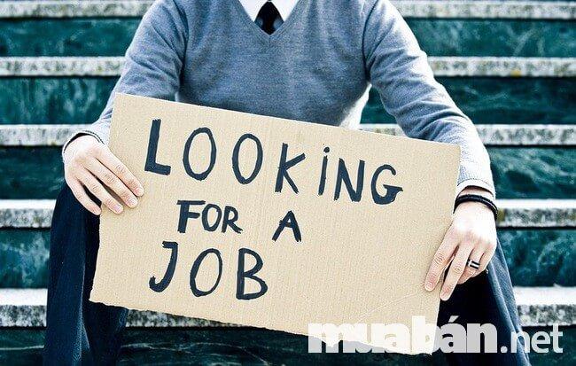Đừng bỏ qua top 5 trang tin việc làm dưới đây nếu đang tìm việc