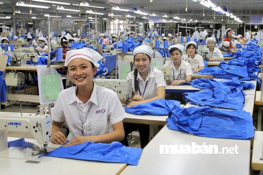 Hiện nay, TP. HCM nhu cầu tuyển dụng lao động phổ thông chiếm hơn 70% trong tổng nhu cầu tuyển dụng.