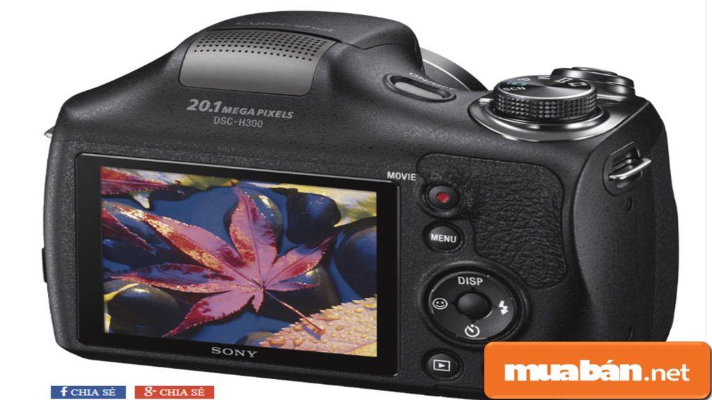 Màn hình Sony Cybershot DSC H300 chụp hình ảnh khá sắc nét.