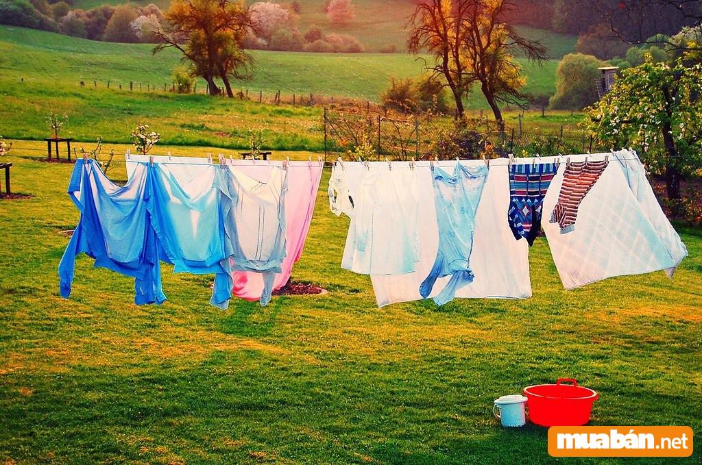 Điểm qua các cách tẩy quần áo bị dính màu hiệu quả nhất