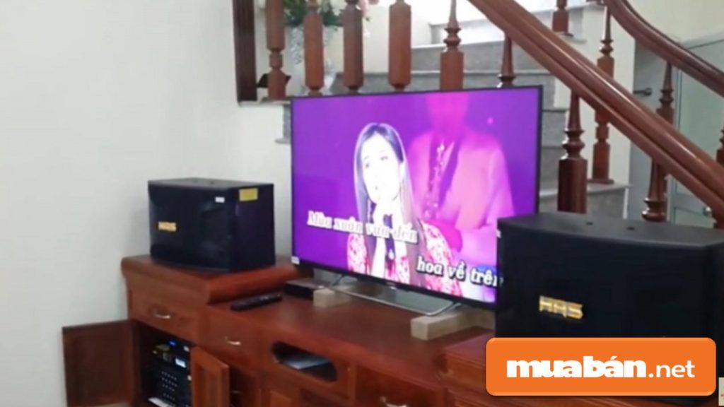 Bạn nên mua loa chuyên dụng dành cho karaoke với công suất phù hợp với không gian phòng.