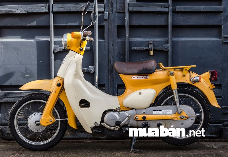 xe máy dành cho học sinh