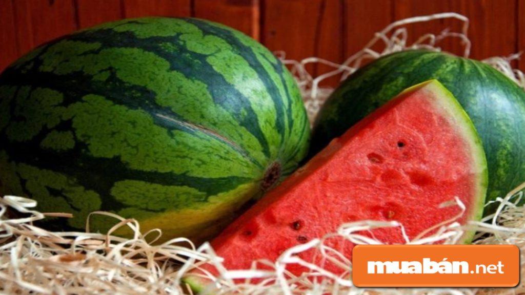 Bạn nên cầm quả dưa hấu lên, thấy chắc và nặng, trái tròn và phần vỏ có nhiều gân là ngon.
