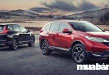 7 điều thú vị về Honda CR-V và giá bán mới nhất