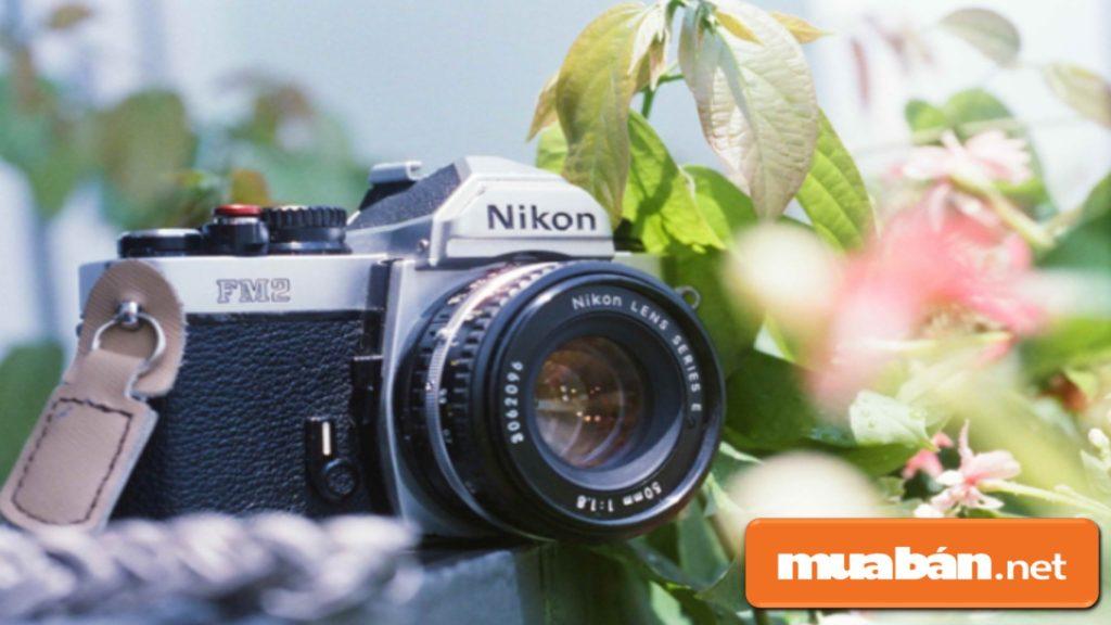 """""""Ngoại hình"""" của máy ảnh phim thường không được nhỏ gọn như máy ảnh kỹ thuật số."""