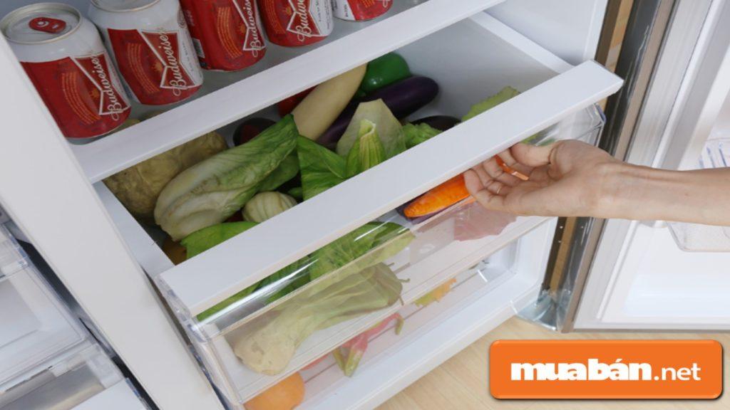 Mỗi loại tủ lạnh 2 cánh đều có số lượng ngăn kéo, hộc tủ hoặc giá đỡ… khác nhau.