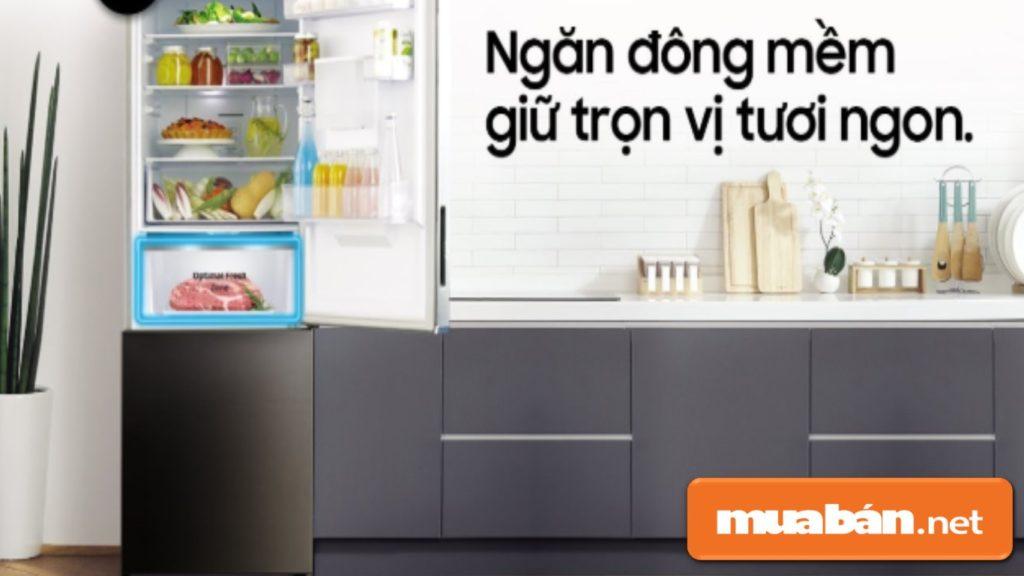 Tủ lạnh ngăn đá dưới thường có ngăn cấp đông mềm giúp giữ thực phẩm tươi lâu mà không cần rã đông khi sử dụng.