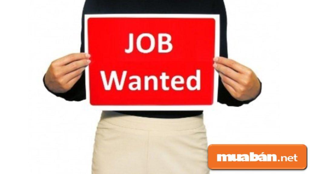 Khi cần tìm việc làm, bạn có thể nhờ người quen, bạn bè giới thiệu công việc cho...