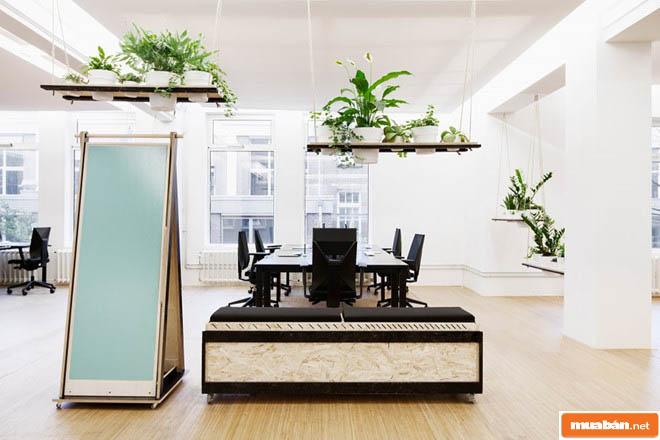 Văn phòng đẹp nhất