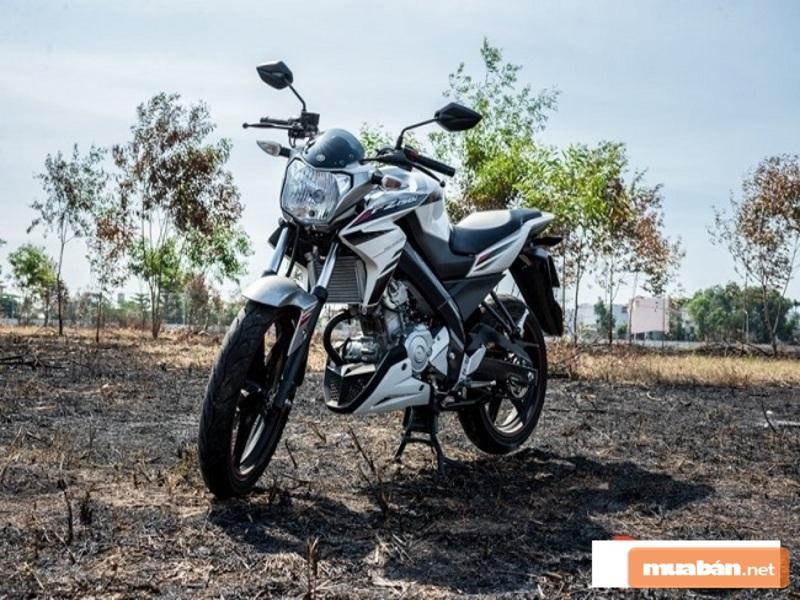 Đây là một trong những mẫu xe mô tô giá dưới 100 triệu được yêu thích nhất hiện nay
