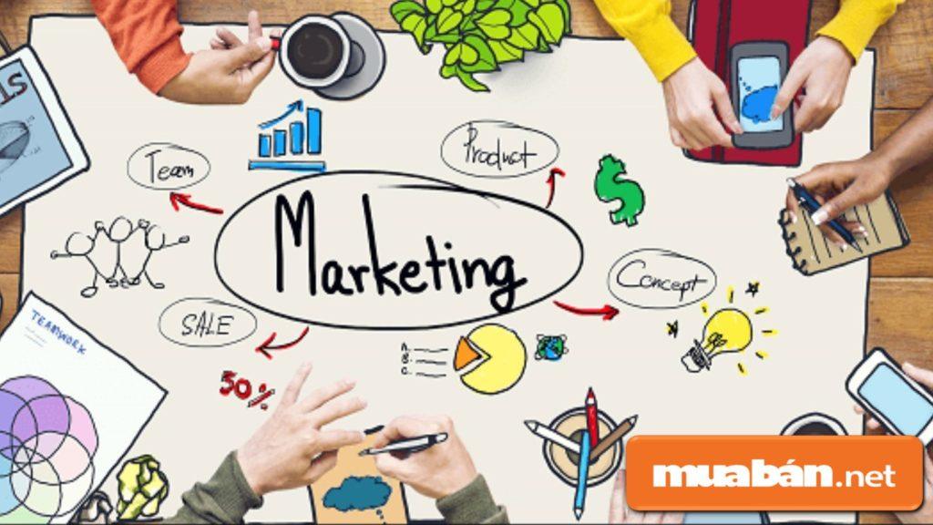 Bạn cũng nên nghiên cứu và đầu tư vào marketing để đưa sản phẩm tiếp cận với khách hàng nhanh hơn, tốt hơn.