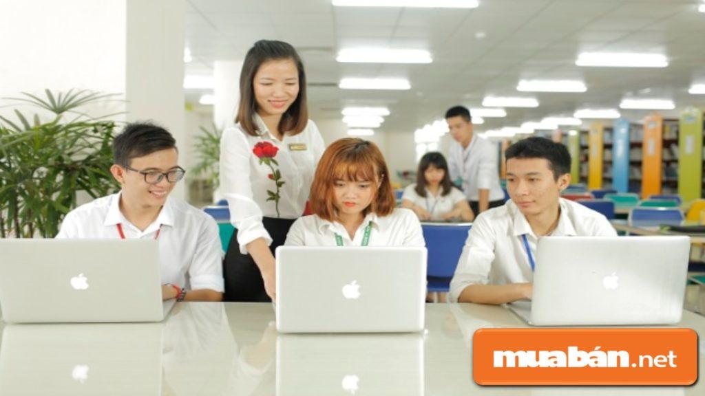 Các trường đào tạo hàng đầu như ĐH Bách Khoa, ĐH CNTT, ĐH KHTN (thuộc Đại học Quốc gia TP.HCM)