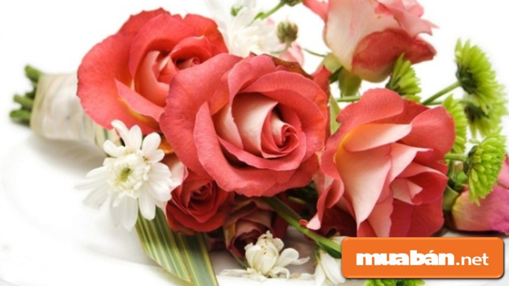 Hoa hồng có thể tặng từng cành, hoặc kết hợp với các loại hoa khác thành bó hoa đẹp lãng mạn.