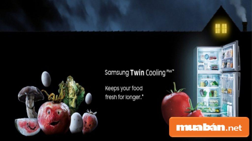 Hệ thống làm lạnh kép giúp cho việc bảo quản thực phẩm giữ được hương vị .