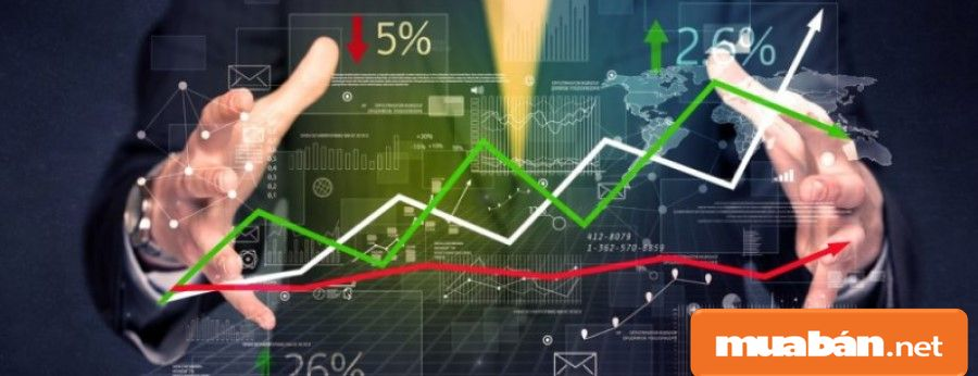 Bạn hãy tham khảo, điều tra thị trường người tiêu dùng trước khi quyết định bán buôn.