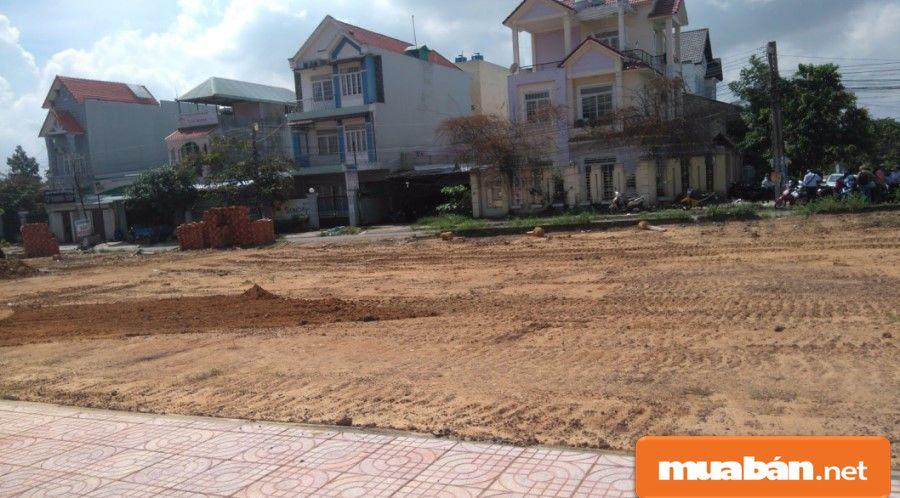Các dự án đều tập trung ở khu dân cư đang phát triển, với các tiện ích xung quanh khá tốt.