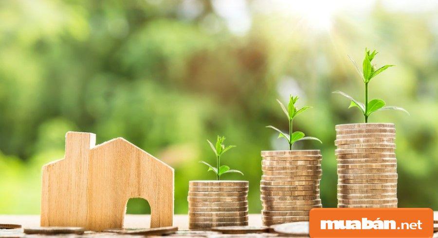 Tìm nhà cho thuê nguyên căn giá rẻ