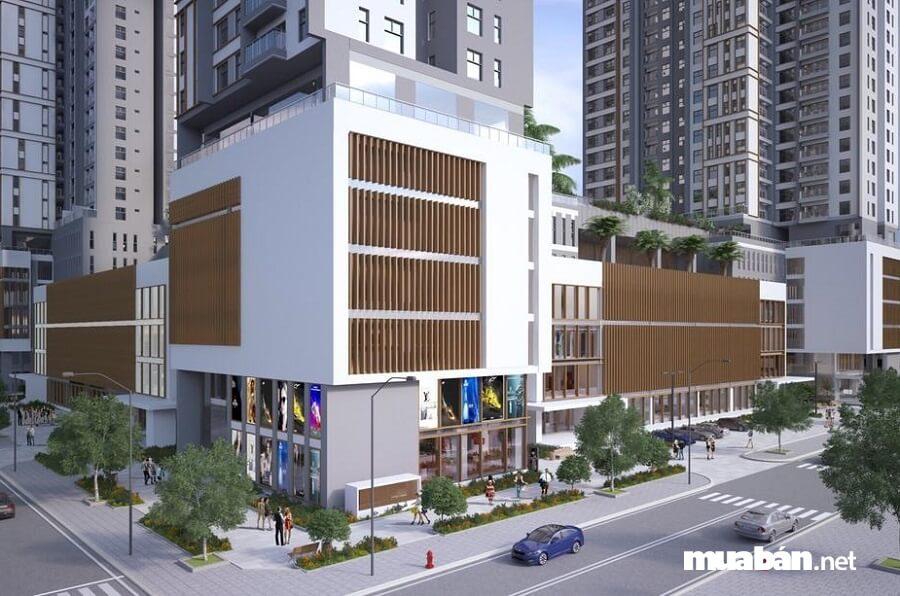 Dự án Xi Grand Courtthu hút sự quan tâm của nhiều cư dân và nhà đầu tư bất động sản.