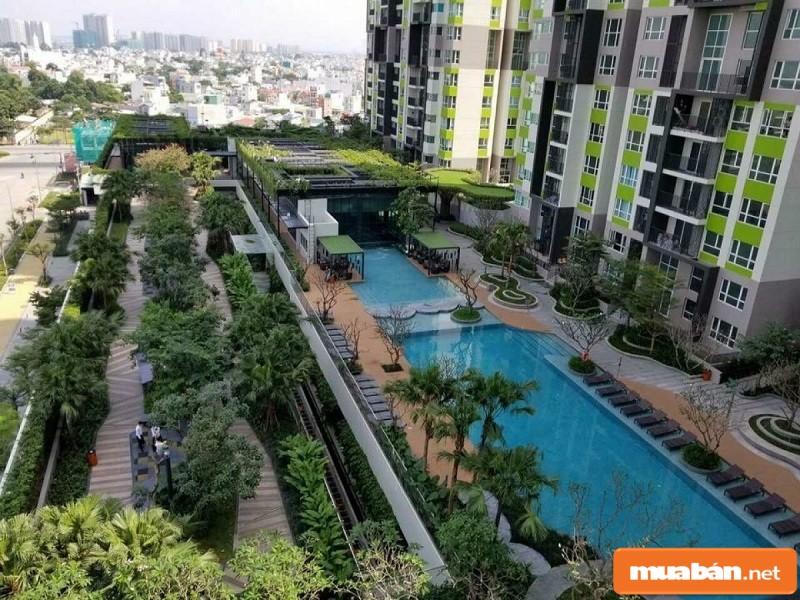 View của dự án